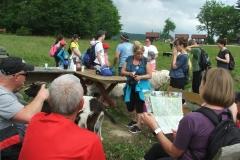 XXI Gwiaździsty Zlot Turystyczny Szlakami św. Jana Pawła II Piwniczna Zdrój, 23-25.05.2018 r.